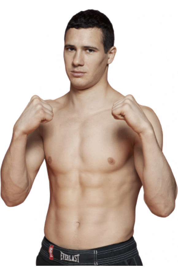 Borislav Nikolic